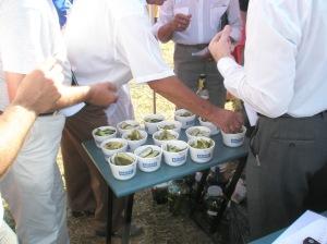 Toimus ka külade poolt valmistatud hapukurkide hindamine