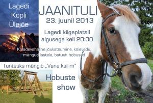 Lagedi Jaanituli 2013