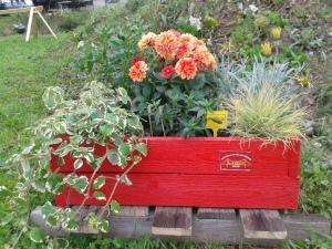 Lagedi lipuvärvides botaanika õppekast, kus kasvavate lillede esitähtedest moodustub sõna LAGEDI. Lõvilõug, aruhein, gazaania, enelas, daalia, ilunõges. Kurna küla.